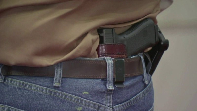 Researchers study 'red flag' gun laws in CT and IN, find reduction in firearm suicides