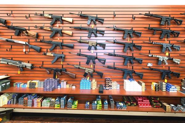 Initiative would require sixth graders study firearms