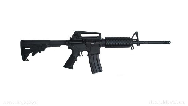 """Federal government declares AR-15s are not """"weapons of war"""" as gun rights opponents frequently claim"""
