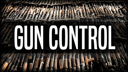 NOT COMING FOR YOUR GUNS? SINCE PARKLAND SHOOTING, 26 STATES HAVE PASSED 55 GUN CONTROL LAWS