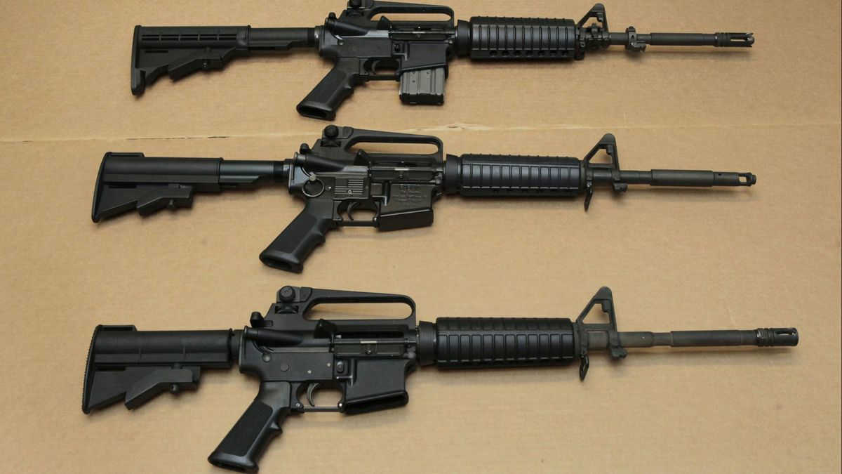 Victim's aunt: Pulse, Parkland and other slaughters bound together by the AR-15 rifle | Commentary